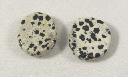 Dalmation Jasper Polished Coin