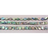 Abalone Shell Slice Beads