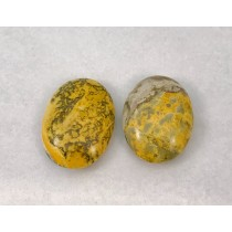 Bumble Bee Jasper Pillow Shape