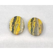 Bumble Bee Jasper Flat Oval Shape