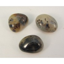 Dendritic Agate Polished Pebbles Small