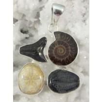 Multi Fossil Pendant