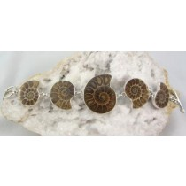 Fossil Ammonite Toggle Bracelet