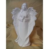 Shepard Angel