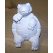 shelf sitting turtle