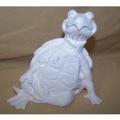 sitting Attitude turtle