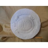 turtle plaque or stepping stone