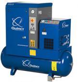QGS-10