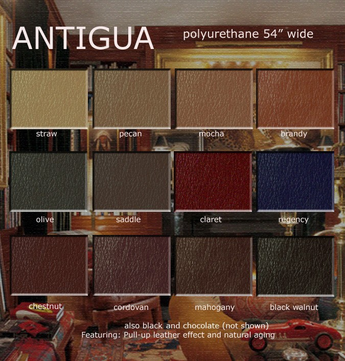 Antigua Color Card