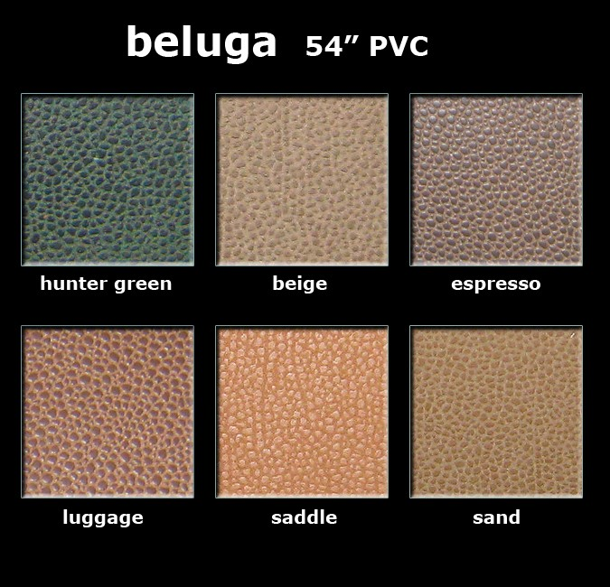 Beluga Color Card