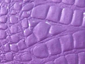 Purple Crocback