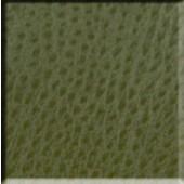Sage Emu Polyurethane