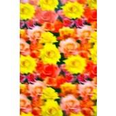 "Lenticular Sheets 14 1/2"" x 19"" - Roses 3D"