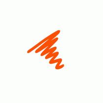 Semi  Permanent Ink Pen Orange