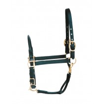 Rolled Nose & Throat Stable Halter for Arabians