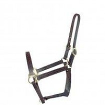 "3/4""  BETA STANDARD HALTER WITHOUT SIDE SNAP"