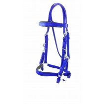 Royal Blue Padded Halter Bridle in Stainless Steel