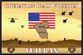 United States Marine Corps Flag-Iraqi Freedom