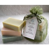Red & Green Soap Bundle