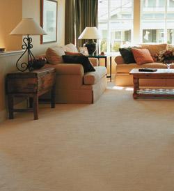 Carpet & Upholstery Steam | Upholstery Repairs - Kalamazoo MI
