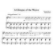 """""""A Glimpse Of The Weave"""" [Lengthy philosophical musing] (Solo) in D"""