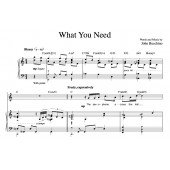 """""""What You Need"""" [Plaintive ballad] in C"""