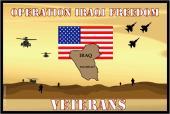 Operation Iraqi Freedom Veterans Flag