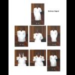 hand gripper training manual pdf